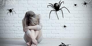 Phobien, Spinnen, Hunde, Menschen, Dunkelheit .... Hypnosepraxis Vierling